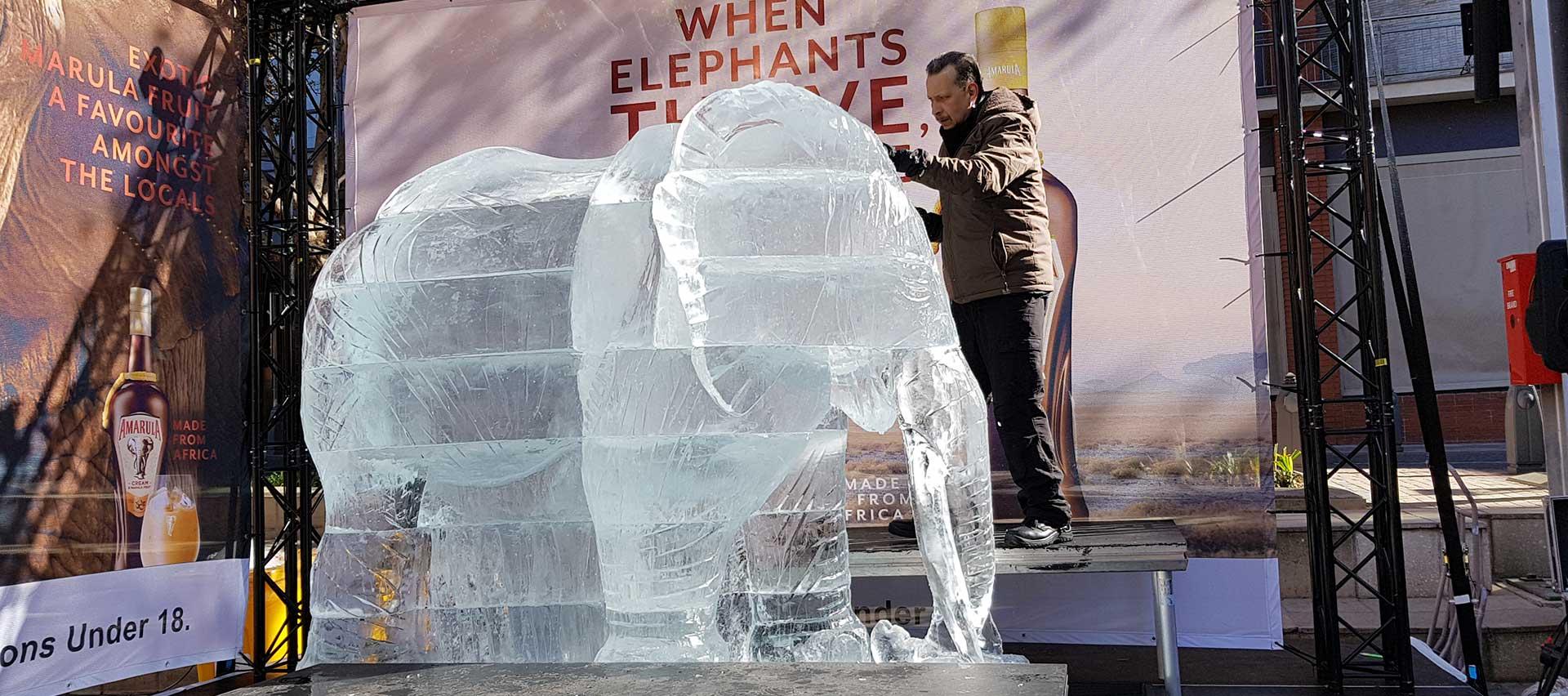 Ice-Art-Amarula-4