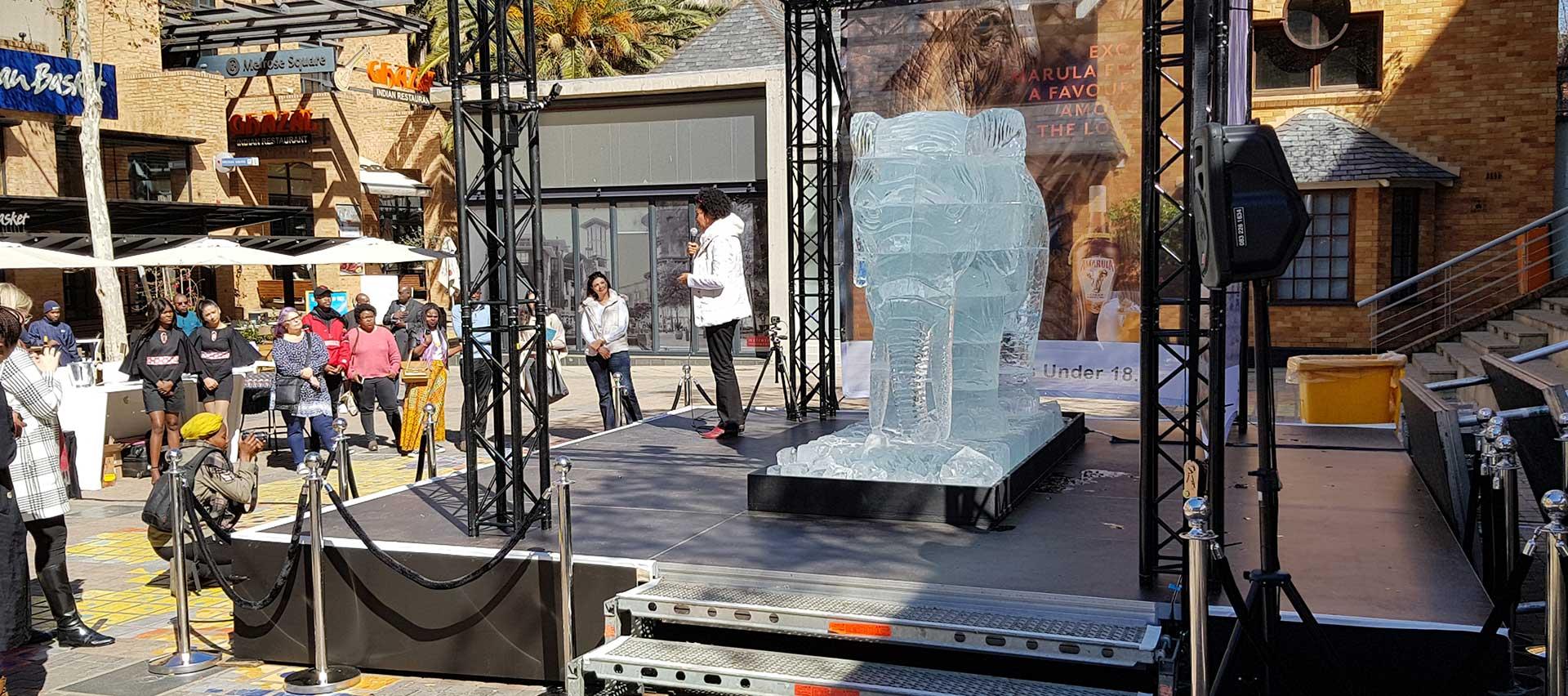 Ice-Art-Amarula-7