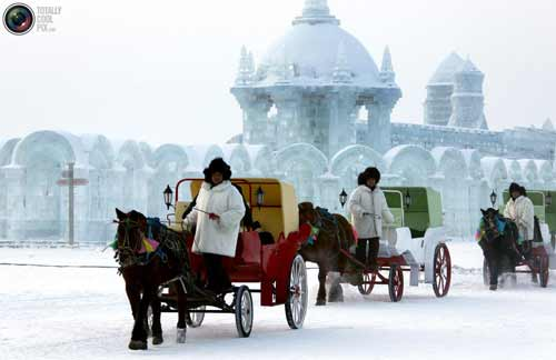 Harbin Ice Culture